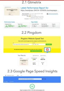 fully optimized wordpress blog – cloudways speed and performance test